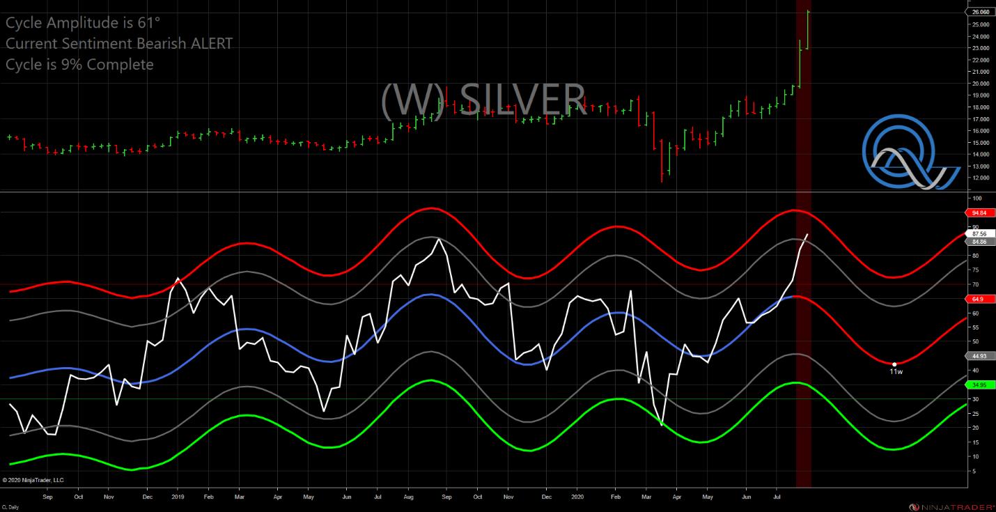 Silver W