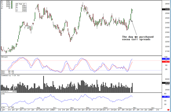 Daily Cocoa Chart